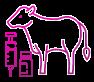 sanidad-animal-grupobago